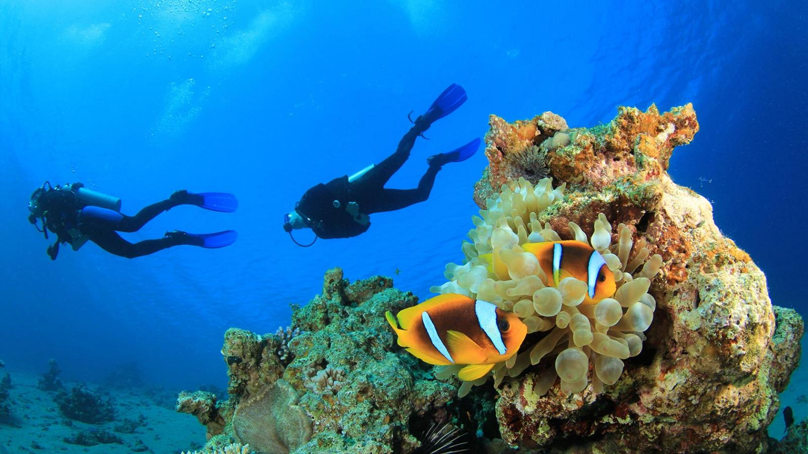 Scuba Diving In The Turquoise Waters Of Alanya