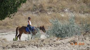 Horseback Riding at the Magical Valleys of Cappadocia