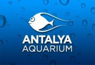 from Alanya: Book now for Aquarium in Antalya with Vigo Tours