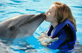 Side Antalya: Swimming with Dolphins Winter program