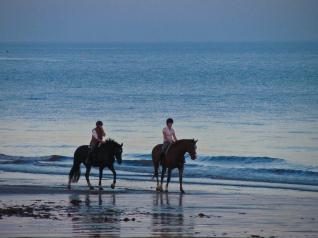 Belek Riding: Horseback Riding on the romantic beaches in Belek