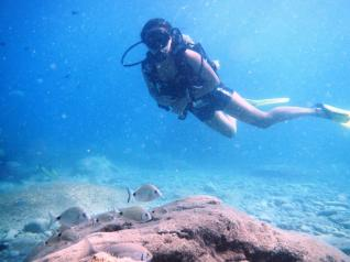 Scuba Diving in Antalya: Scuba Diving for Beginners in Antalya